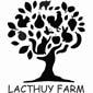 LACTHUY FARM